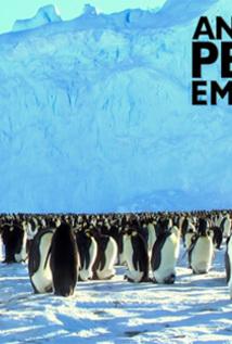Antarctica's Penguin Emperors